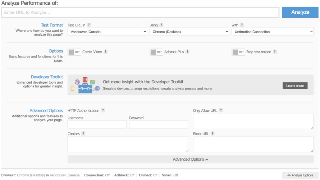 Screenshot: GTMetrix Advanced Settings
